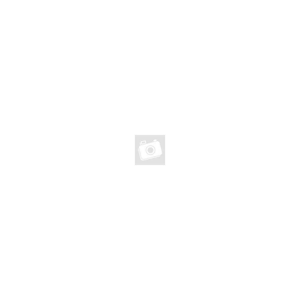 Kapcsolótábla 3 billenő kapcsolós, 12V/24V, vízálló, króm